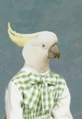 Ever wonder what you'd look like as a bird?